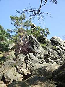 hockendes weib ibbenbüren klettern