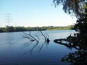 Der Ewaldsee in Herten - grüne Oase im Ruhrgebiet